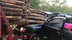 'Final Destination' (maar dan nét niet): auto doorboord met boomstammen na zware klap, chauffeur slechts lichtgewond