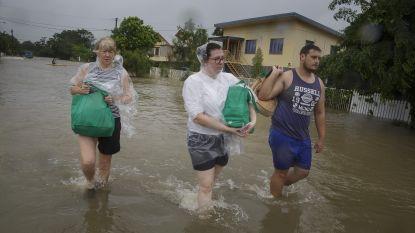 Australische stad loopt onder door openen dam: 2.000 huizen met opzet onder water gezet, overheid waarschuwt voor krokodillen en slangen