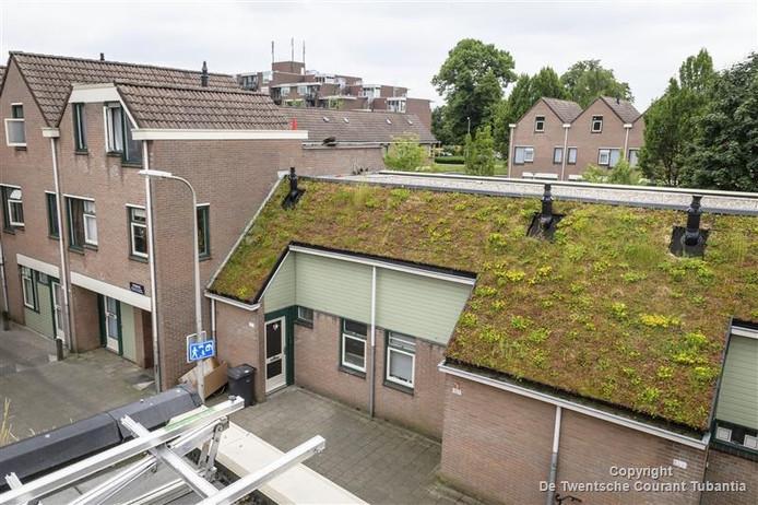 Groene daken in Enschede
