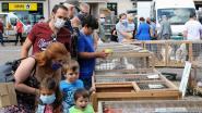 """Dierenmarkt mag opnieuw vier weken niet doorgaan: """"Gemoedelijk karakter niet verzoenbaar met strikte marktregels"""""""
