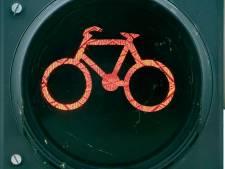 Let op: fietspaden Bornsestraat in Hengelo vanaf dinsdag op de schop