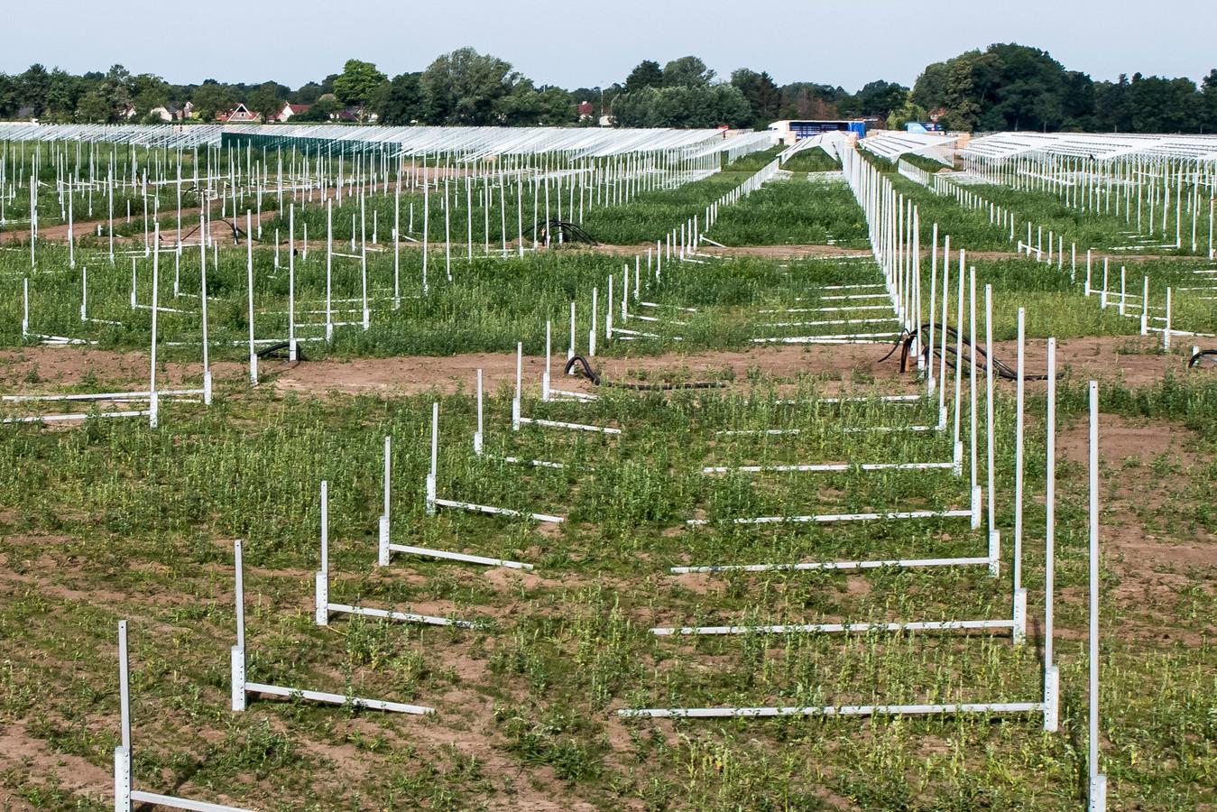 De aanleg van het zonnepark aan de Aadijk is in volle gang.