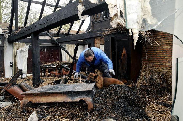 Technisch onderzoek met hond in de zwartgeblakerde restanten van de woonboerderij aan de Schoorstraat in Udenhout. foto Marie-Thérèse Kierkels/PVE
