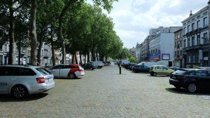 """Buurtcomités vragen extra ruimte op middenberm Poincarélaan: """"Maak er een buurttuin van"""""""