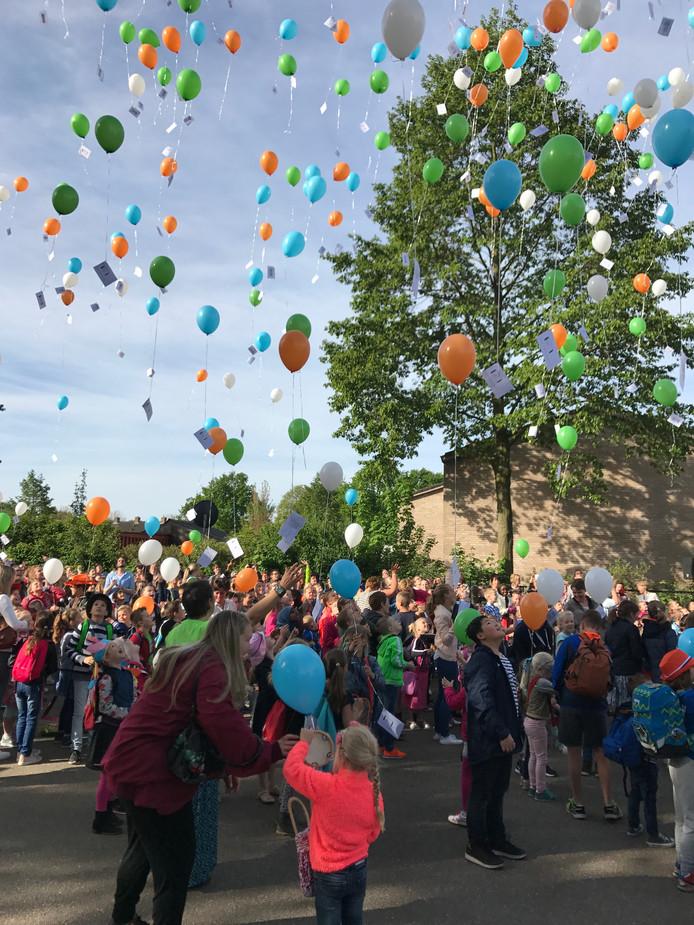 Gemeente Eersel wil het oplaten van ballonnen in de lucht gaan verbieden.
