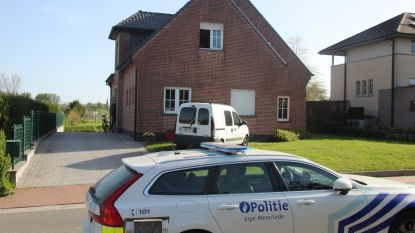 Gewelddadige homejacking eindigt in crash op E40: 2 daders opgepakt na klopjacht