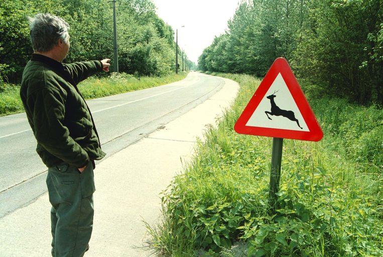 Een waarschuwingsbord voor overstekend wild, elders in Vlaanderen.  Moeten er straks ook aan de Gistelsteenweg dergelijke borden geplaatst worden?