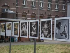 Overpelt (België) een zomer lang in de ban van fotografie