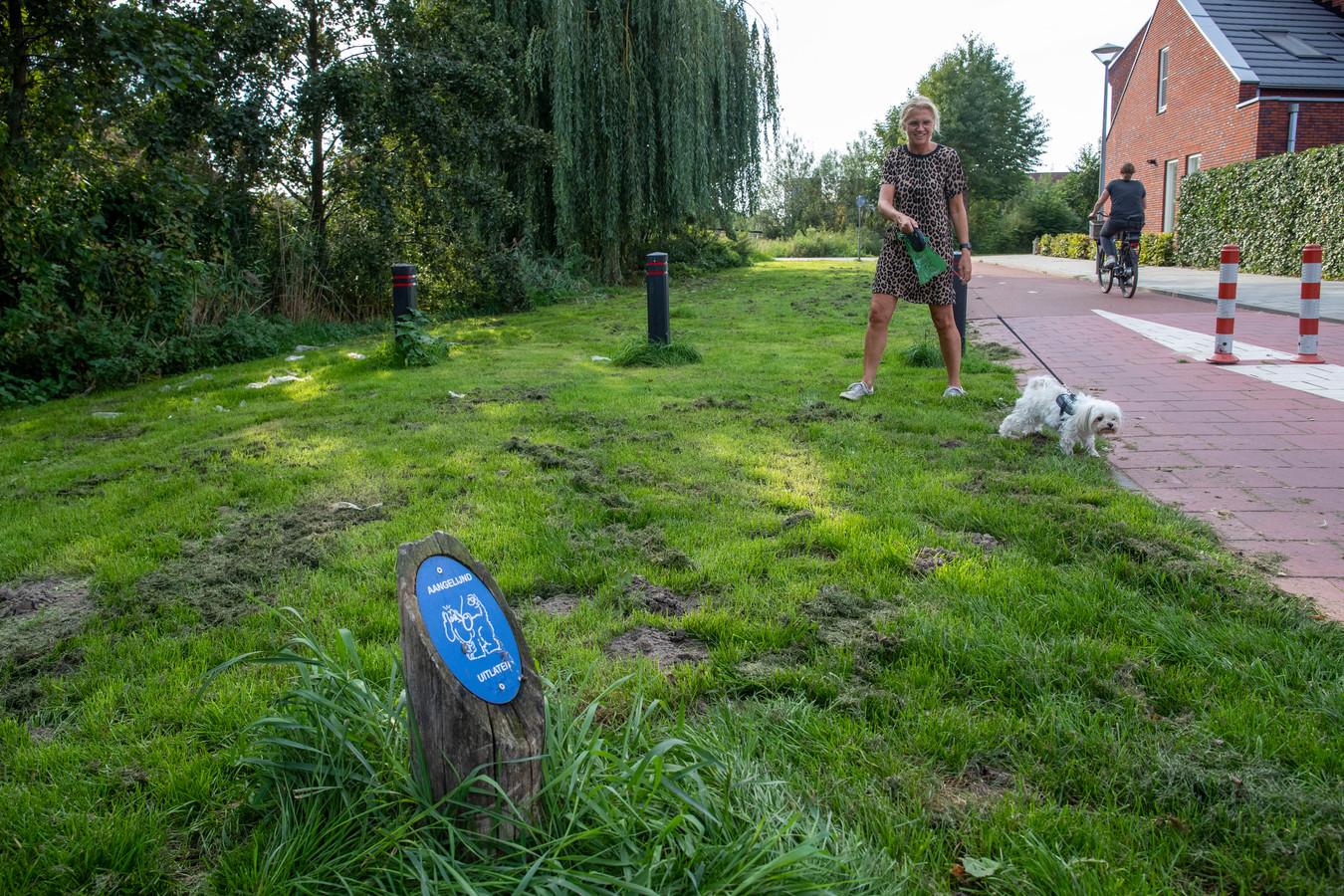 Een hondenuitlaatstrook waar honden aangelijnd mogen worden uitgelaten aan de Kleijerstraat in Veenendaal-Oost.