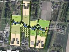 Eco-woningen in de 'achtertuin' van bouwbedrijf Peter Peters