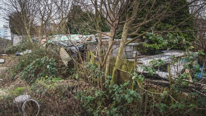Romakamp naast de spoorweg niet ontruimd, NMBS start procedure tot uitzetting