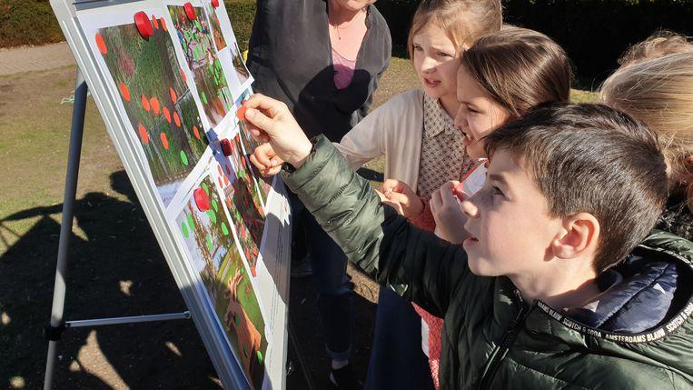 De leerlingen van Schoonbroek geven hun visie over het gehucht