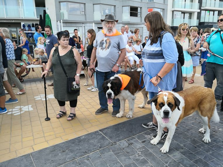 De 50ste Sint-Bernardusfeesten in Nieuwpoort-Bad. Baasje en hond in dezelfde outfit.