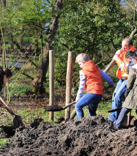 Inwoners Winssen planten voor  aantrekkelijker buitengebied