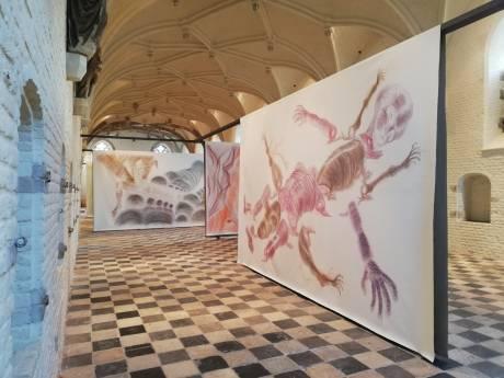 Veel lof én rijksgeld voor Zeeuws Museum en Vleeshal