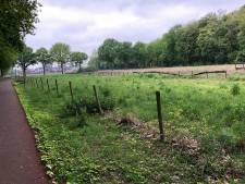 Plan Boschkens, bewoners Tilburgseweg Goirle vrezen inkijk in hun achtertuin
