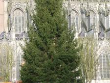 Den Bosch moet Joris' Kerstboom dit jaar met zes andere steden delen