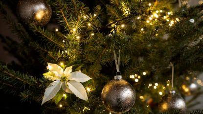 Langeleedse kerstmarkt aan tweede editie toe