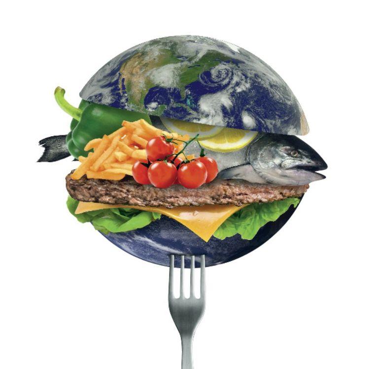 Ons voedingssysteem is verantwoordelijk voor 18 procent van onze klimaatafdruk.