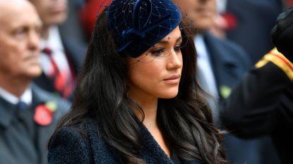 Tot in het kleinste detail onthuld: waarom de Britse royals Meghan Markle als de 'bron van alle kwaad' aanzien