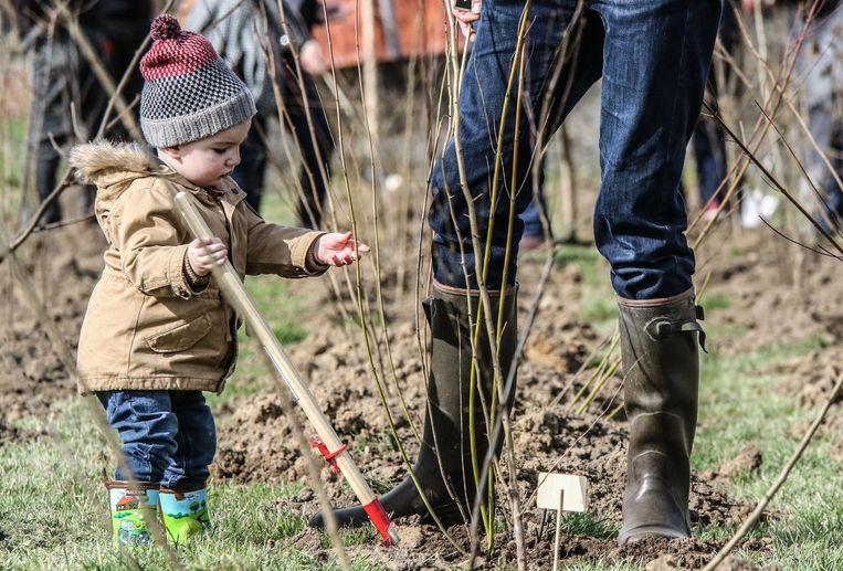 Jong en oud zakten afgelopen weekend af naar Heule om een boom te planten.