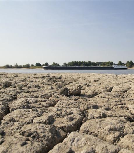 Droogte zorgt opnieuw voor problemen: actie tegen vissterfte en blauwalg