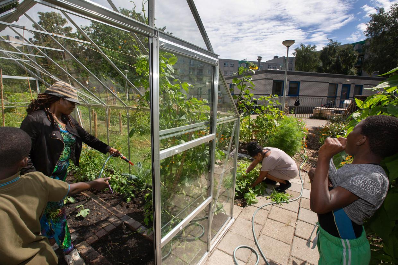 Alicia Geldrop geeft de plantjes in de kas water, haar kind en kleinkind helpen haar. Rechts op haar hurken werkt Maureen in haar tuin.
