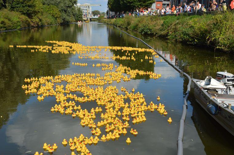 Een Duck Race zoals hier op de Dender krijgen we zondag op onze Gentse Leie aan het Rabot