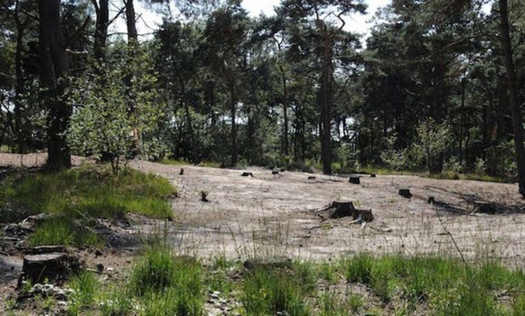 Landschap De Liereman was enkele dagen afgesloten maar is opnieuw toegankelijk.