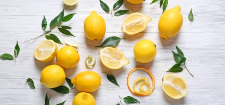 Zo houd je een citroen een maand lang vers