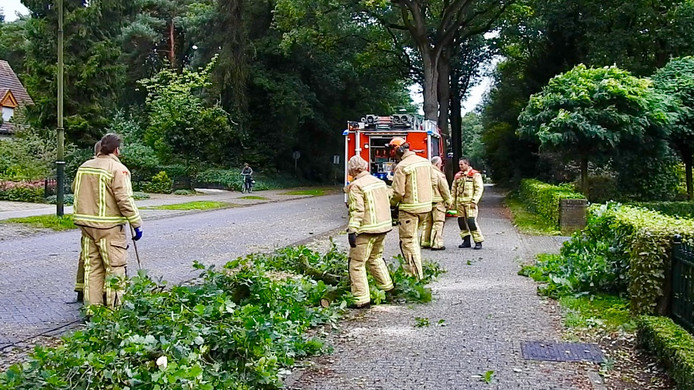 In Bakel viel een grote tak van een boom