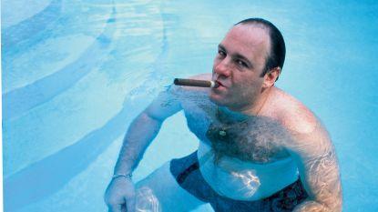 'The Sopranos' hebben u waarschijnlijk geholpen bij uw morele ontwikkeling