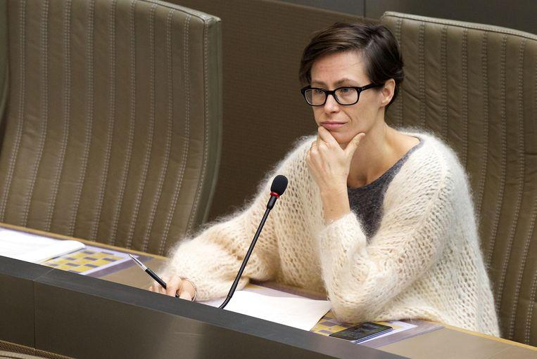 Sp.a-politica Freya Van den Bossche (41) in het Vlaams parlement.