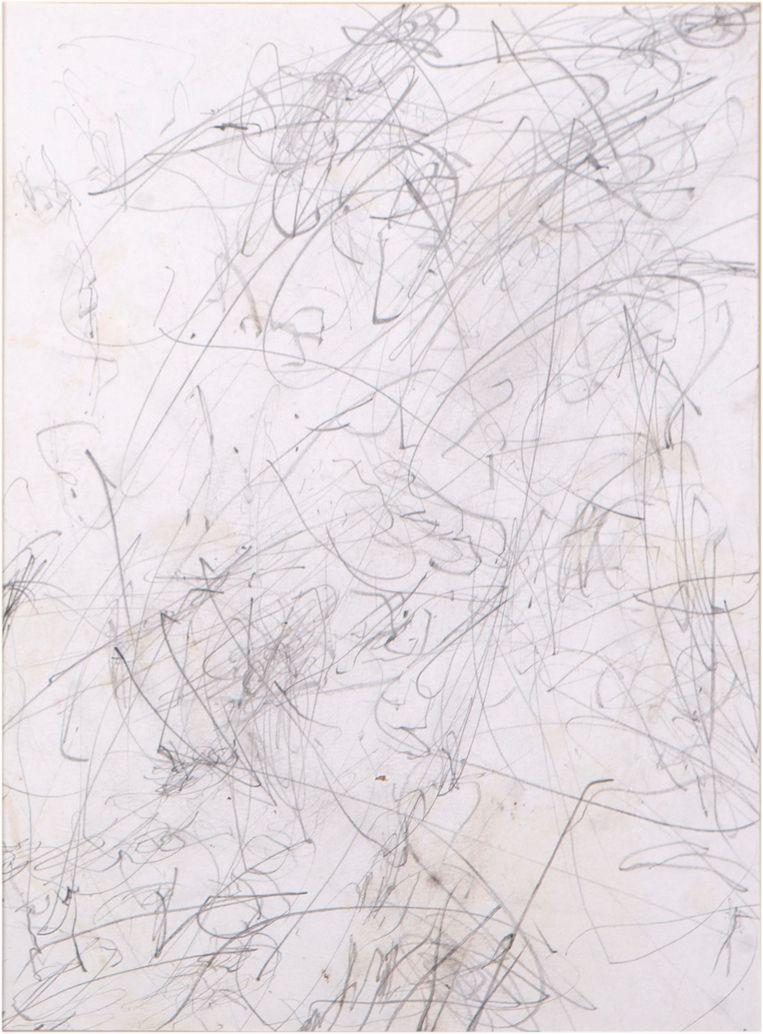 Vermoedelijk de eerste tekening van een bonobo, uit 1993: Dzeeta (uit Zoo Planckendaal, Mechelen) is opvallend vaardig met het potlood, veel handiger dan andere mensapen. Beeld