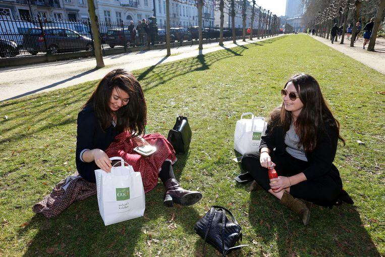 Het is prima weer voor een picknick in het park.
