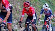 Dopingbom in wielrennen? Vooronderzoek naar Arkéa-Samsic van Quintana