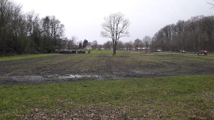 Nu nog een onopvallend graslandje. Straks een natuurveld met wilde bloemen. Achterin links worden 2  flapper-iepen geplant.