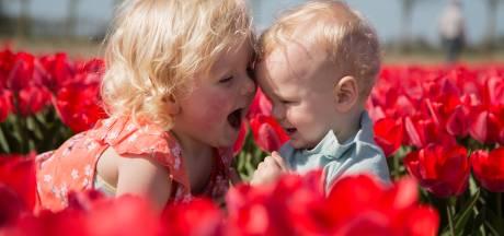 Lezers genieten massaal van tulpenpracht: dit zijn hun foto's