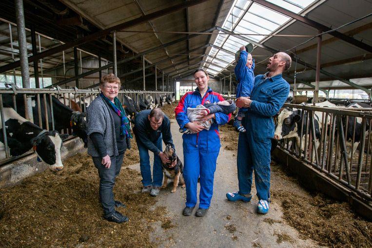 De Familie Meijer runt een melkveehouderij en ijsboerderij in De Lutte (Twente).  Beeld Herman Engbers