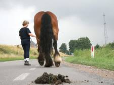 Ruiter hoeft paardenpoep in Westervoort niet op te ruimen