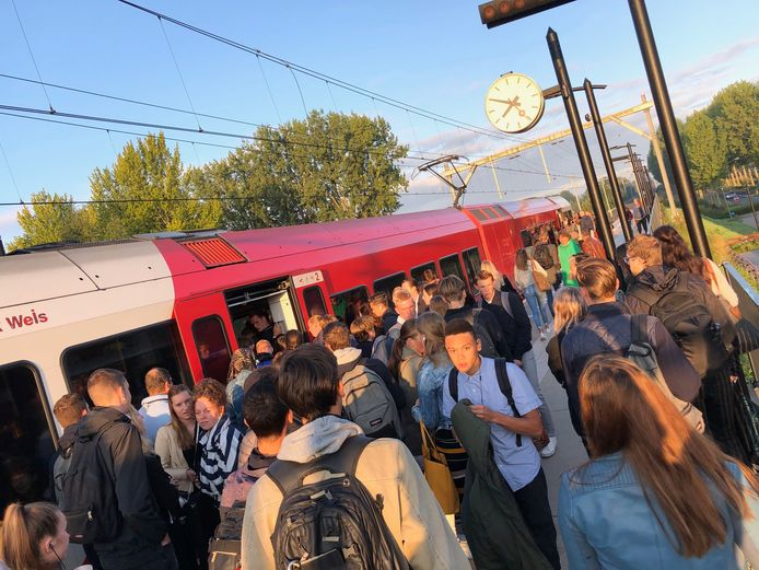 Drukte bij de trein van de MerwedeLingelijn. Vorige week waren de treinen te kort, maar volgens Qbuzz klonteren passagiers vaak ook te veel samen in dezelfde coupé of lopen ze niet door als mensen instappen.
