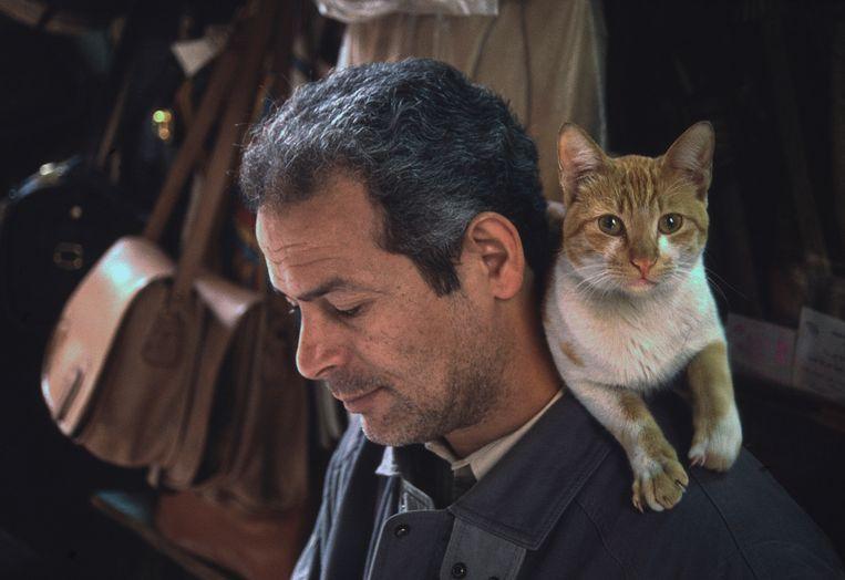 Man en kat in Caïro, 1997.  Beeld null
