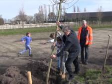 Nunspeet wordt nog groener: boomfeestdag