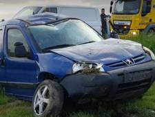 Auto raakt van de weg bij remmen voor roofvogel