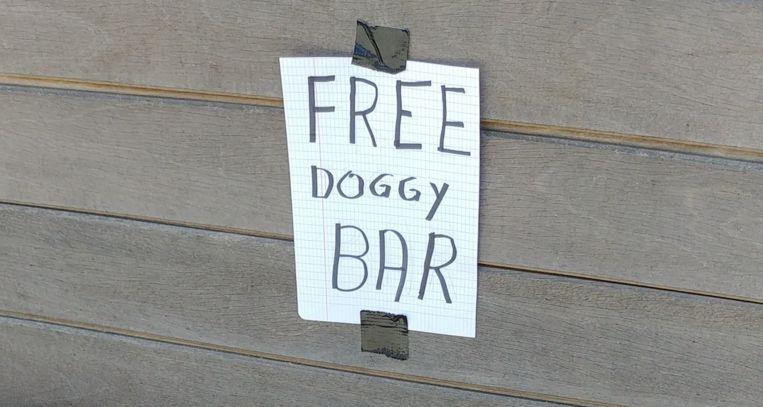 Free doggy bar - Spaanse Lindebaan - Grimbergen