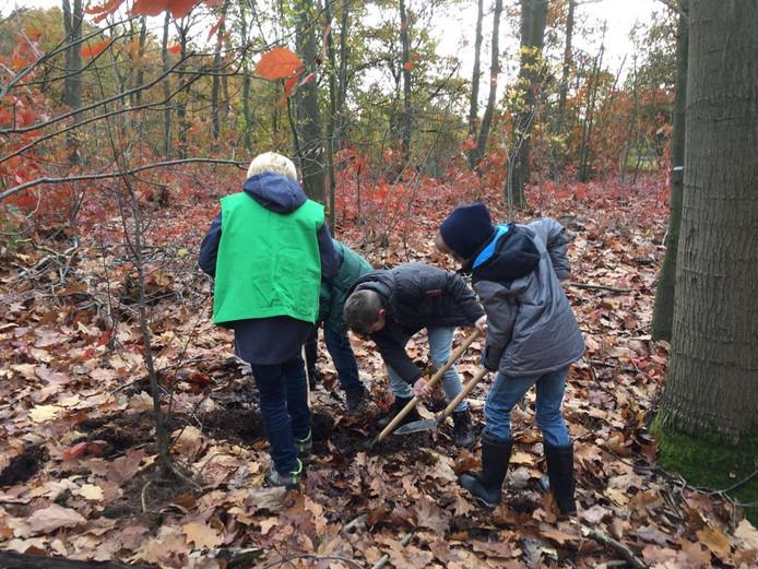 Kinderen planten een jonge linde in het bos.