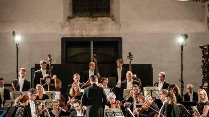 Internationaal projectorkest Anima Eterna Brugge schittert in Truiense Begijnhofkerk