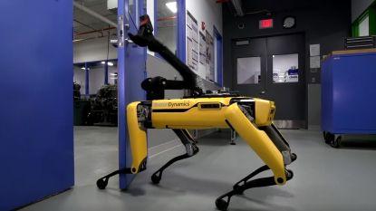 VIDEO: nieuwe robothond kan zelf deuren openen, maar hoe hij beweegt heeft iets griezeligs
