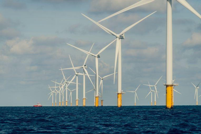 Het windmolenpark Rentel in de Noordzee, zo'n 40 kilometer van de kust verwijderd.