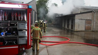 Enorme rookontwikkeling en uren nablussen door brandend stro bij Stal De Steenhuyse